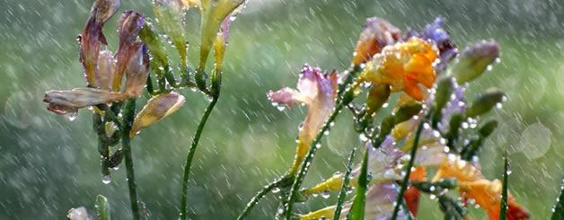 spellen als het regent